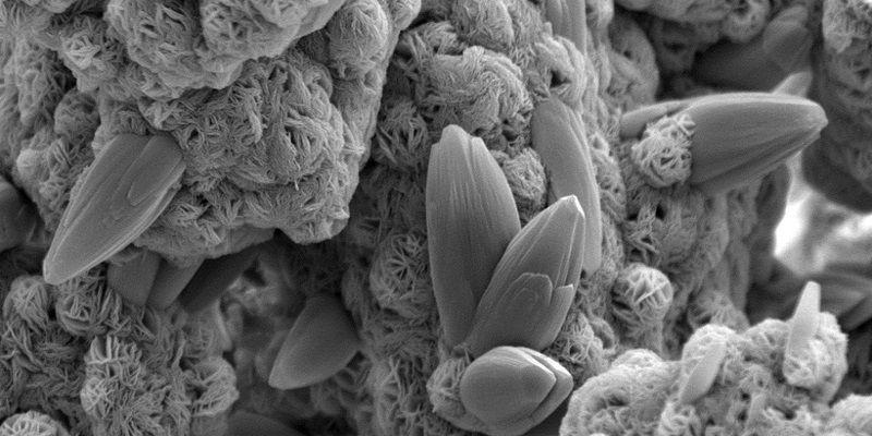 Ingienería en Nanotecnología