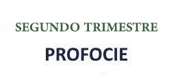 SEGUNDO_TRIMESTRE_PRO_2015